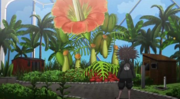 植物園の食虫植物