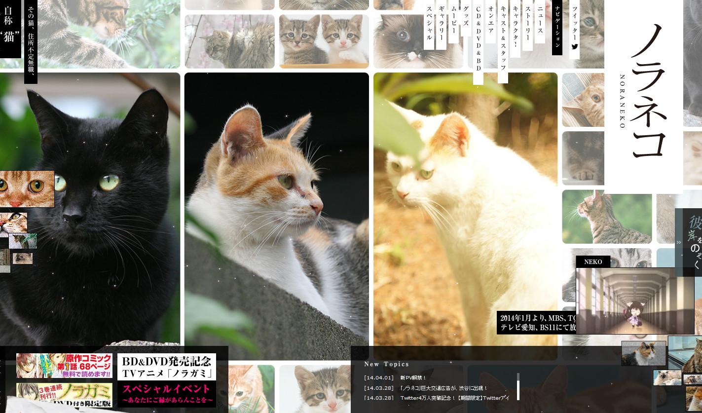 ノラガミが野良猫に!!