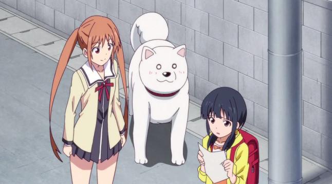 アホガール 第11話『かっこいい犬!』感想